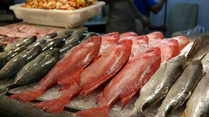 Vigilância inspeciona peixarias em operação conjunta de ordenamento urbano no Recreio