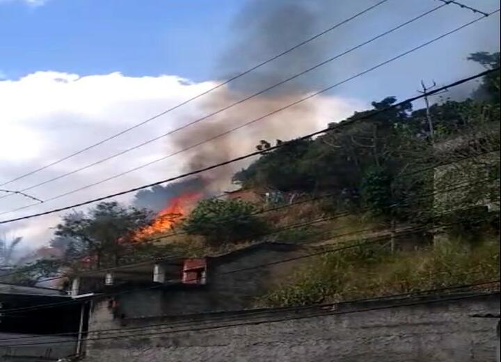 Fogo em mata atinge casas na Zona Norte