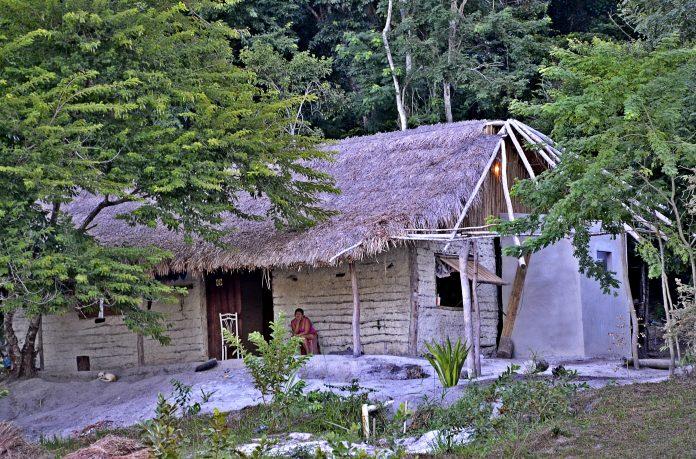 Tribos indígenas de Maricá na quarentena