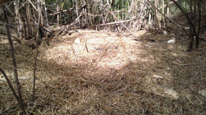 Polícia Civil de Maricá descobre cemitério clandestino