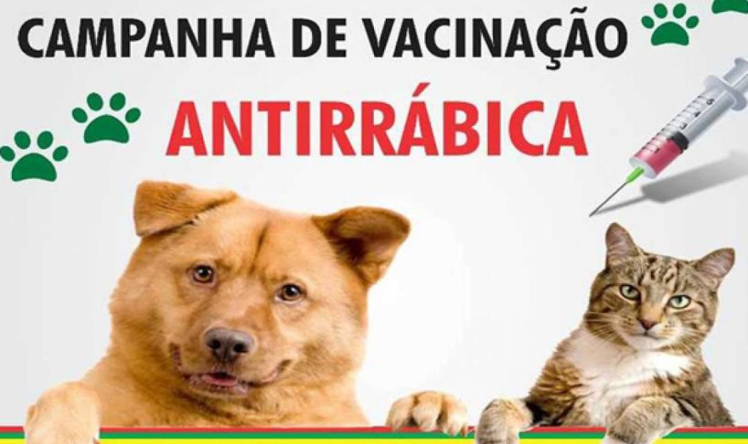 Maricá: Antirrábica neste fim de semana em Itaipuaçu e Inoã