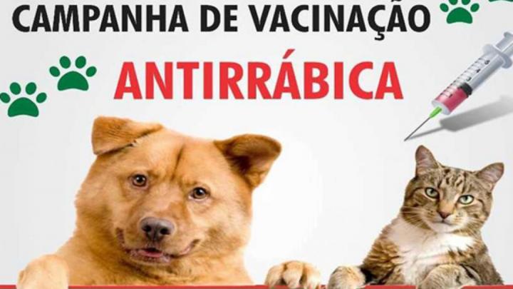 Maricá:  Campanha de vacinação antirrábica em Maricá começa no final de semana