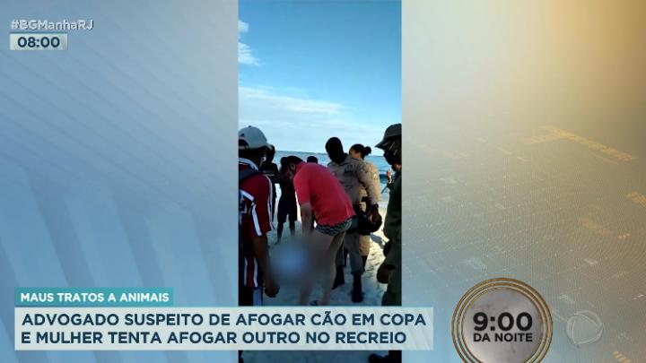 Advogado é preso após matar cachorro por afogamento no Rio