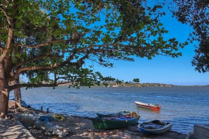 Prefeitura de Maricá aciona INEA sobre fenômeno recorrente de mortandade de peixes nas lagoas
